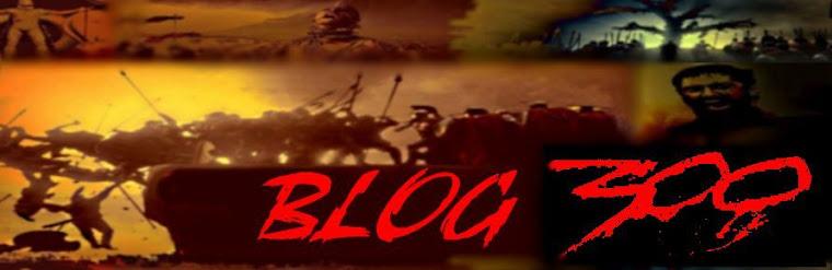 Blog 300