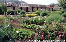 CONSERVATOIRE DES PLANTES A PARFUM DE MILLY-LA-FORET
