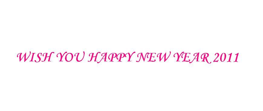 WISH U A HAPPY NEW YEAR 2011 ***