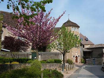 Tournus France