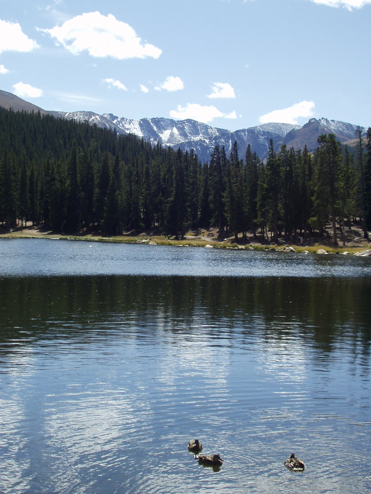 echo lake, mount evans drive