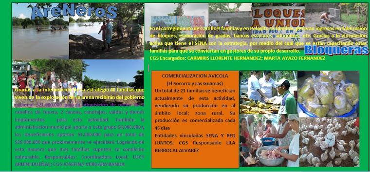 PROYECTOS PRODUCTIVOS SAN PELAYO