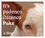 De Puka blog banner