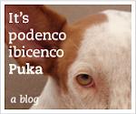 De Puka blog banner