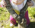 Abraçando àrvores...