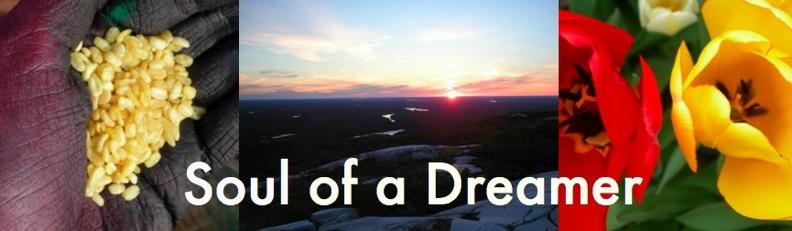 Soul of a Dreamer