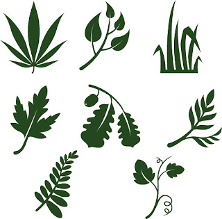 Free SVG Leaves