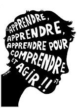 Francais Langue Etrangere C1 Faire Un Essai Argumentatif