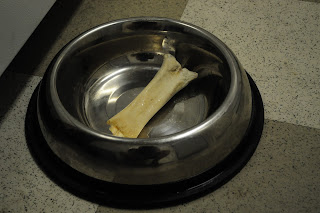 Bob's bone inside of his dog bowl