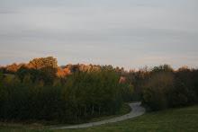 la photo du 24 octobre 2008 (165)