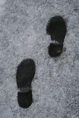 la photo du 3 décembre 2008 (203)