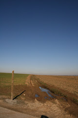 la photo du 12 mars 2009 (301)