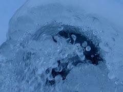 la photo du 17 décembre 2009 (577)