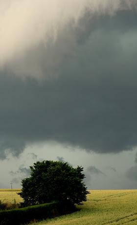 la photo du 12 juillet 2010 (775)