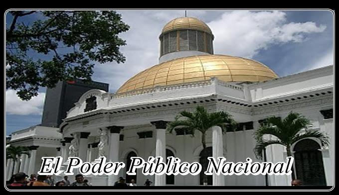 El Poder Público Nacional