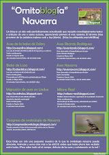 Ornitoblogia Navarra