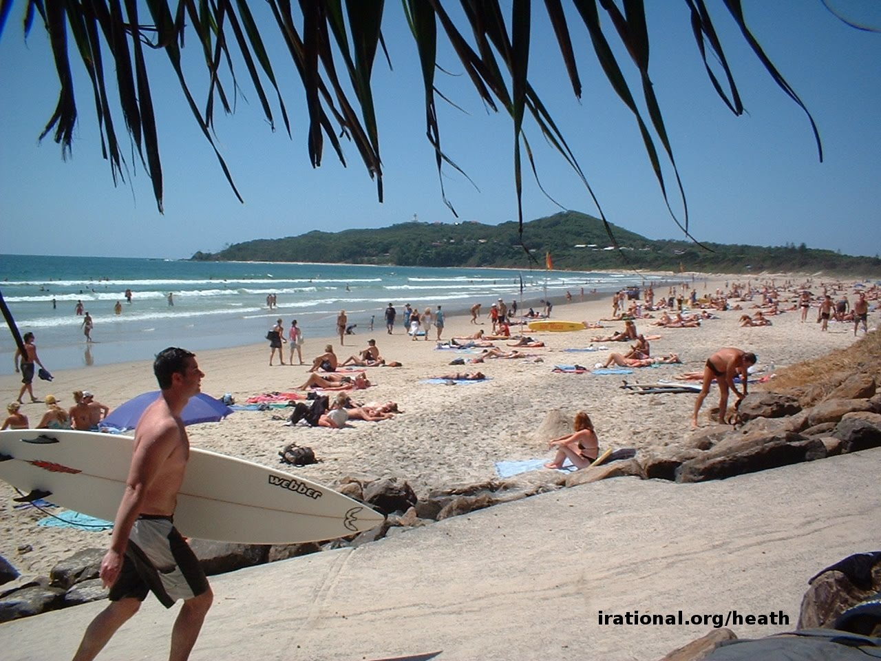 On q byron bay