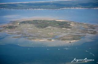 Vue aérienne ile aux oiseaux bassin d'arcachon