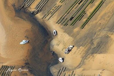 Vue aérienne d'ostéiculteurs au travail sur leurs Parcs