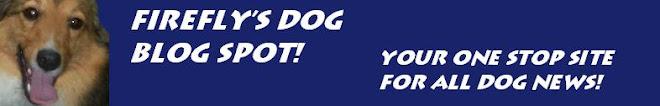 Firefly's Dog Blog Spot