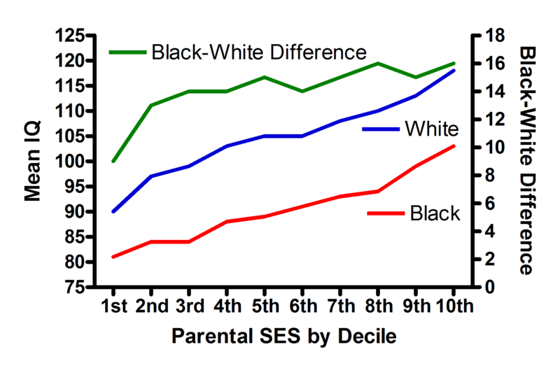 Iq by race by ses png