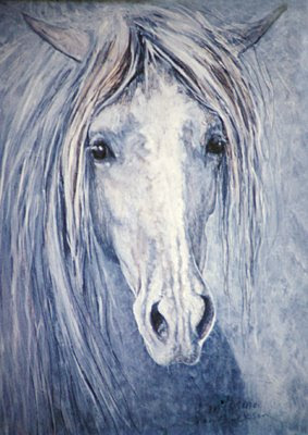 Andalusian horse painting by equine artist Shari Erickson