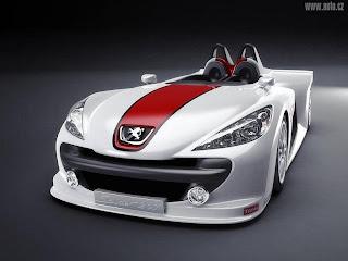 Peugeot Modification