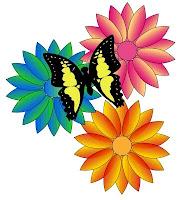 Buttefly effect