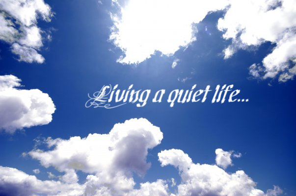 Living a quiet life...