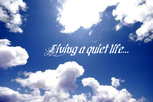 Living a quiet life...