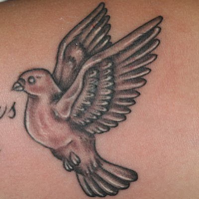 dove tattoos for girls