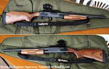 My Deer Hunting Gun