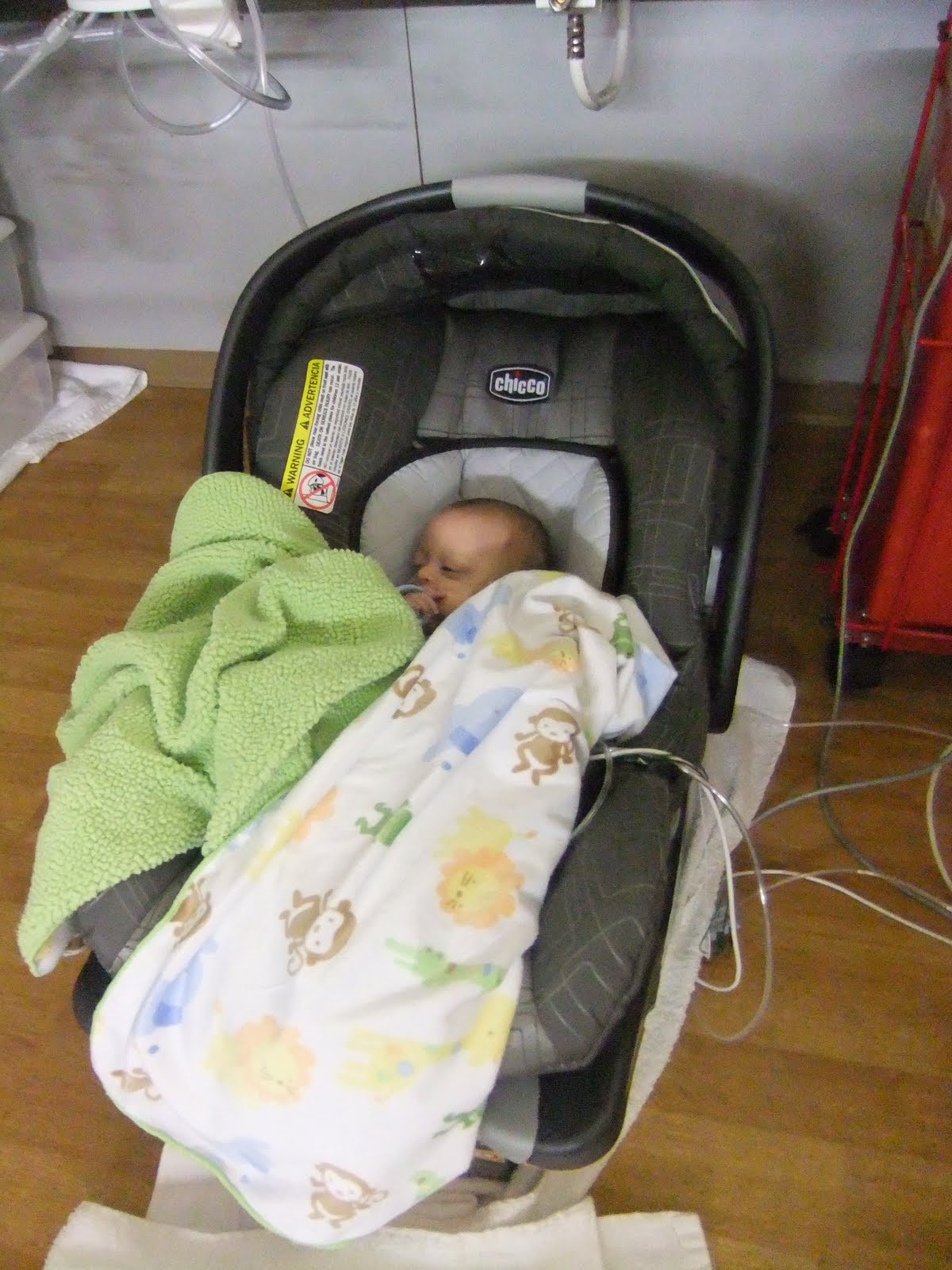 Parenting The Preemie Pope Car Seat Test