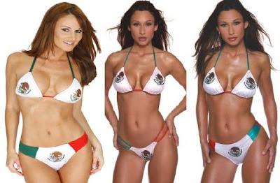 http://2.bp.blogspot.com/_4lPjSE9ZiOQ/SoWnVv2ERMI/AAAAAAAAAms/gRJO_RX2BOE/s400/Mexican+Bikini+Flag.JPG