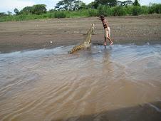crocodile tour in Costa Rica..yikes!