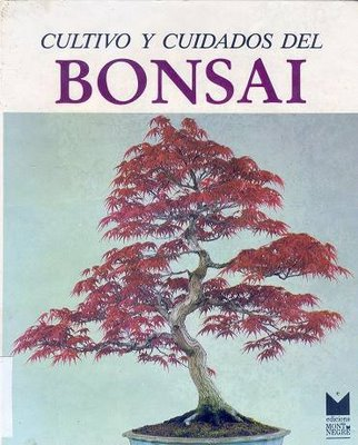 Aprendiendo japon s cultivo y cuidados del bons i for Hortensias cultivo y cuidados