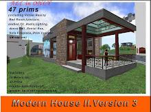 Modern House II