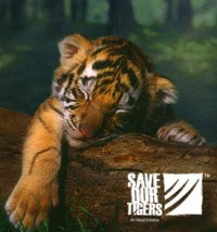 Save our tigers