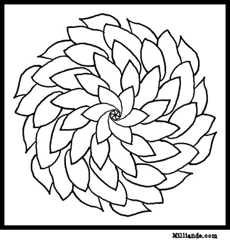 Slobbery image with regard to free printable flower coloring pages