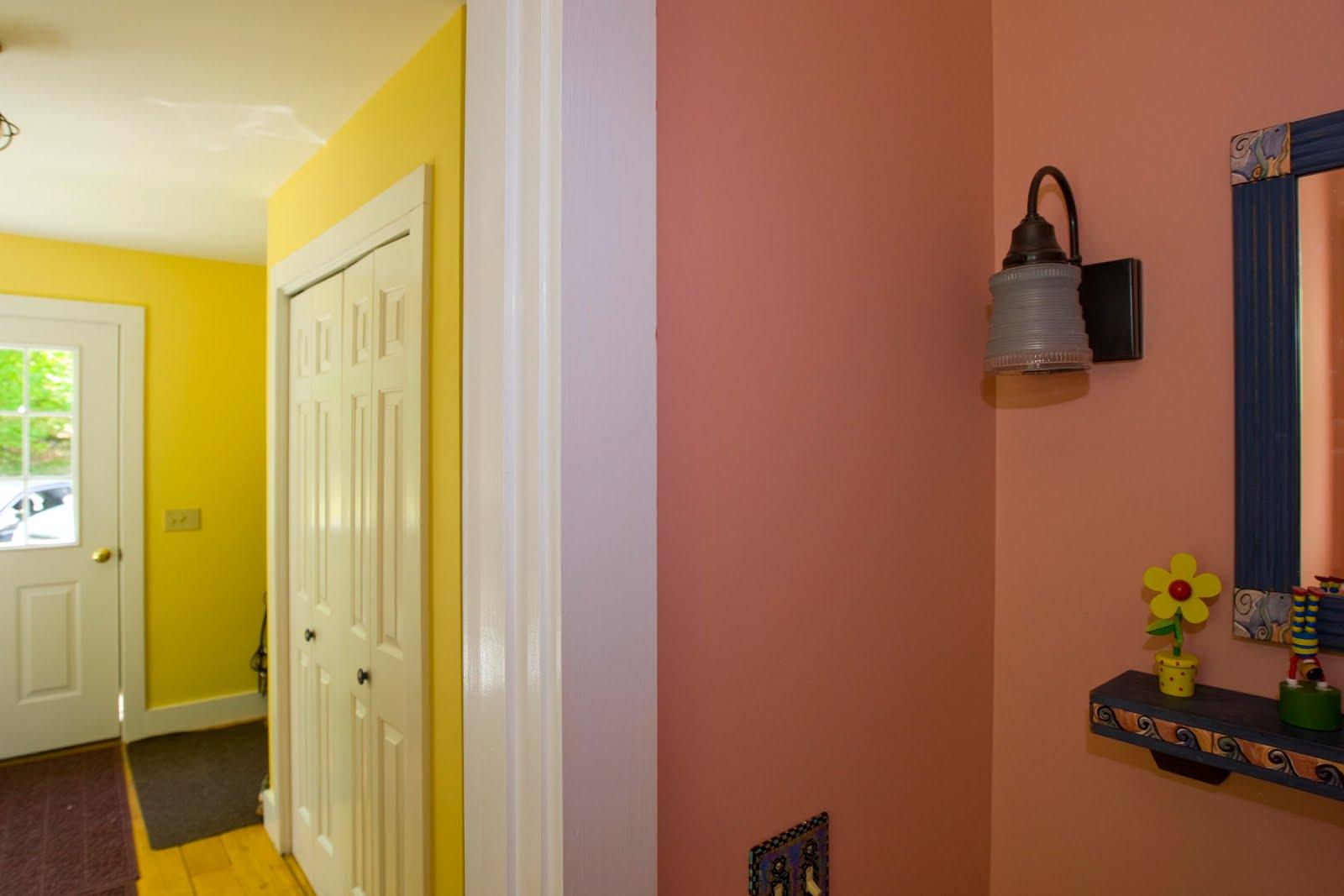 Paint for bathroom ceiling