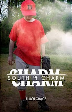 <em>South of Charm</em> by Elliot Grace