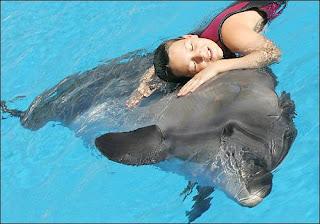 Заикание.NEWS:Дельфины от заикания
