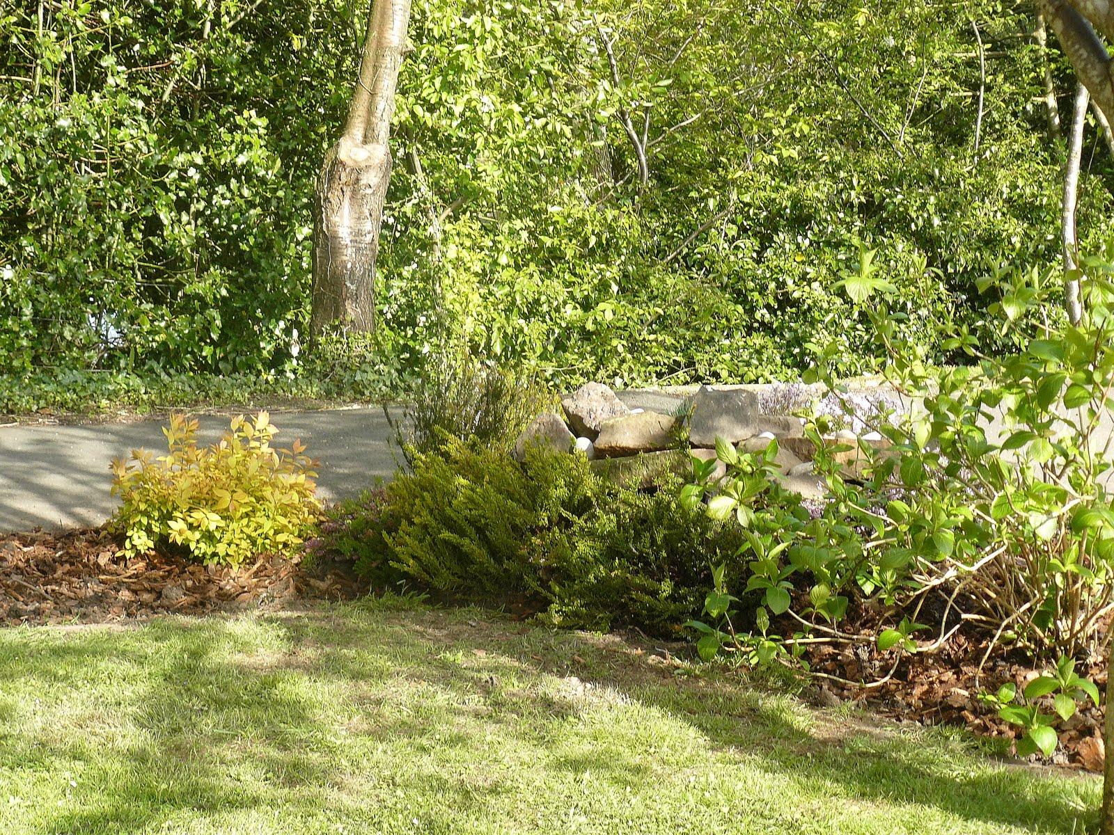 Nessie\'s World: Unser kleiner Steingarten