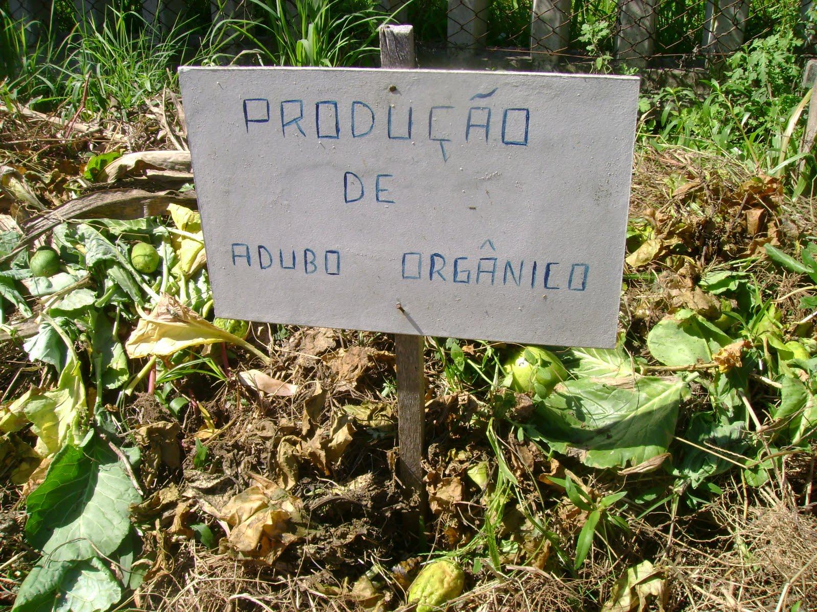 Tri beiros do ana ris abril 2010 - Abono organico para plantas ...