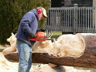 Log Carved