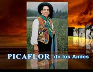Picaflor de los Andes