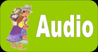 Audio Andino