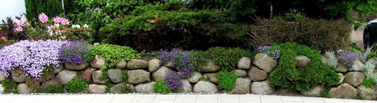 garten anders findlinge f r eine steinmauer natursteinmauer und steingarten kombiniert. Black Bedroom Furniture Sets. Home Design Ideas