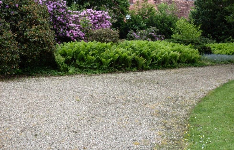 Ein Pflegeleichter Garten : Gartenanders Ein pflegeleichter und reräsentativer Garten mit