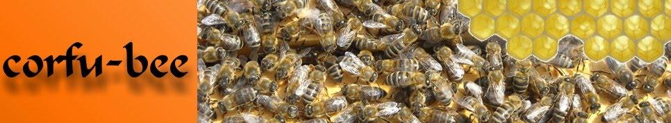 Corfu bee